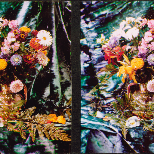 Still life of flowers and ferns by Lumière Brothers