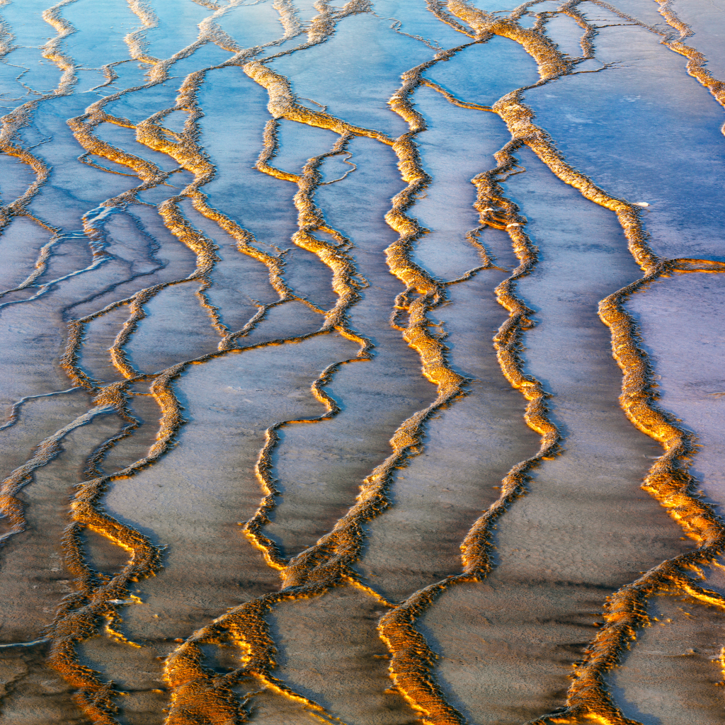 Grand Prismatic Geyser #1 Detail by undefined