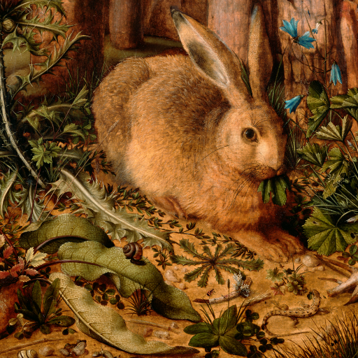 A Hare in the Forest by Hans Hoffman