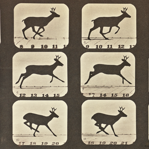 Running by Eadweard J. Muybridge