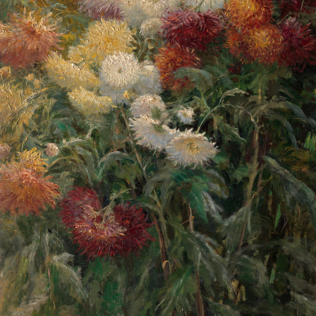 Chrysanthemums in the Garden at Petit-Gennevilliers by undefined