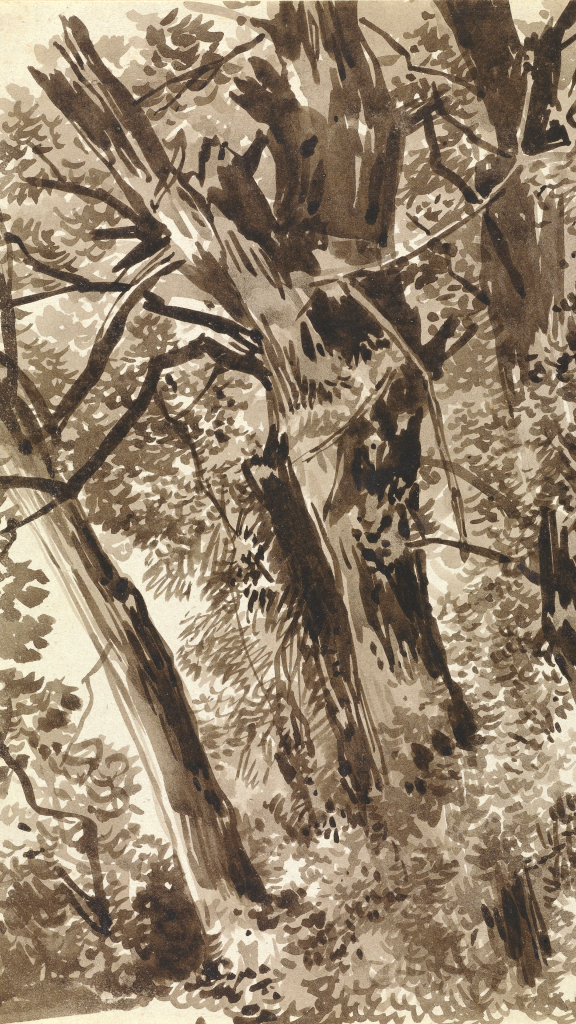 Trunks and Branches by Franz Innocenz Kobell