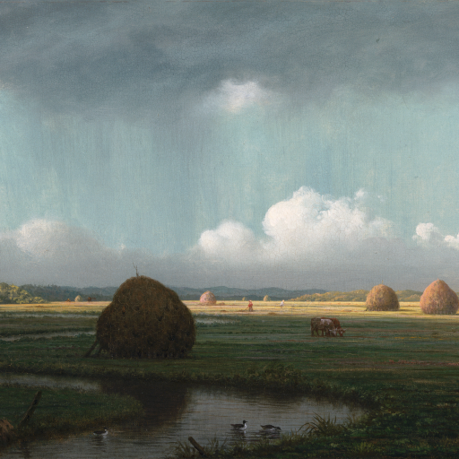Sudden Shower, Newbury Marshes by undefined