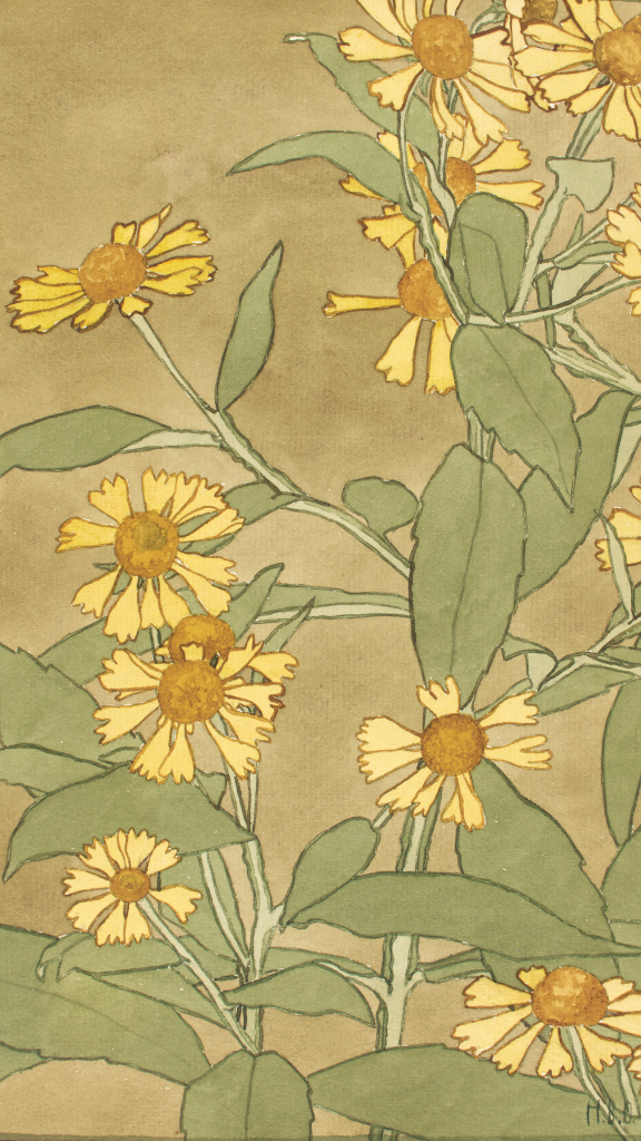 Daisies with Orange Center and Yellow Petals by Hannah Borger Overbeck