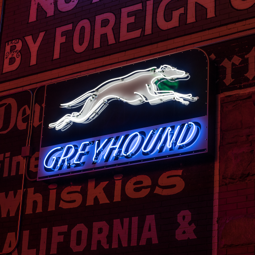 Greyhound by Carol M. Highsmith