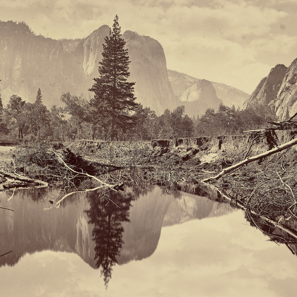 Looking Down Yosemite Valley by Carleton Watkins