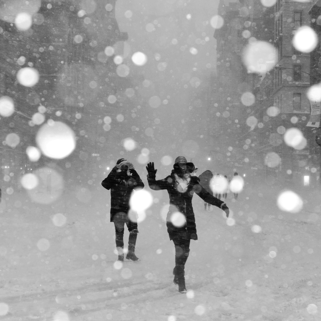 Snowstorm by undefined