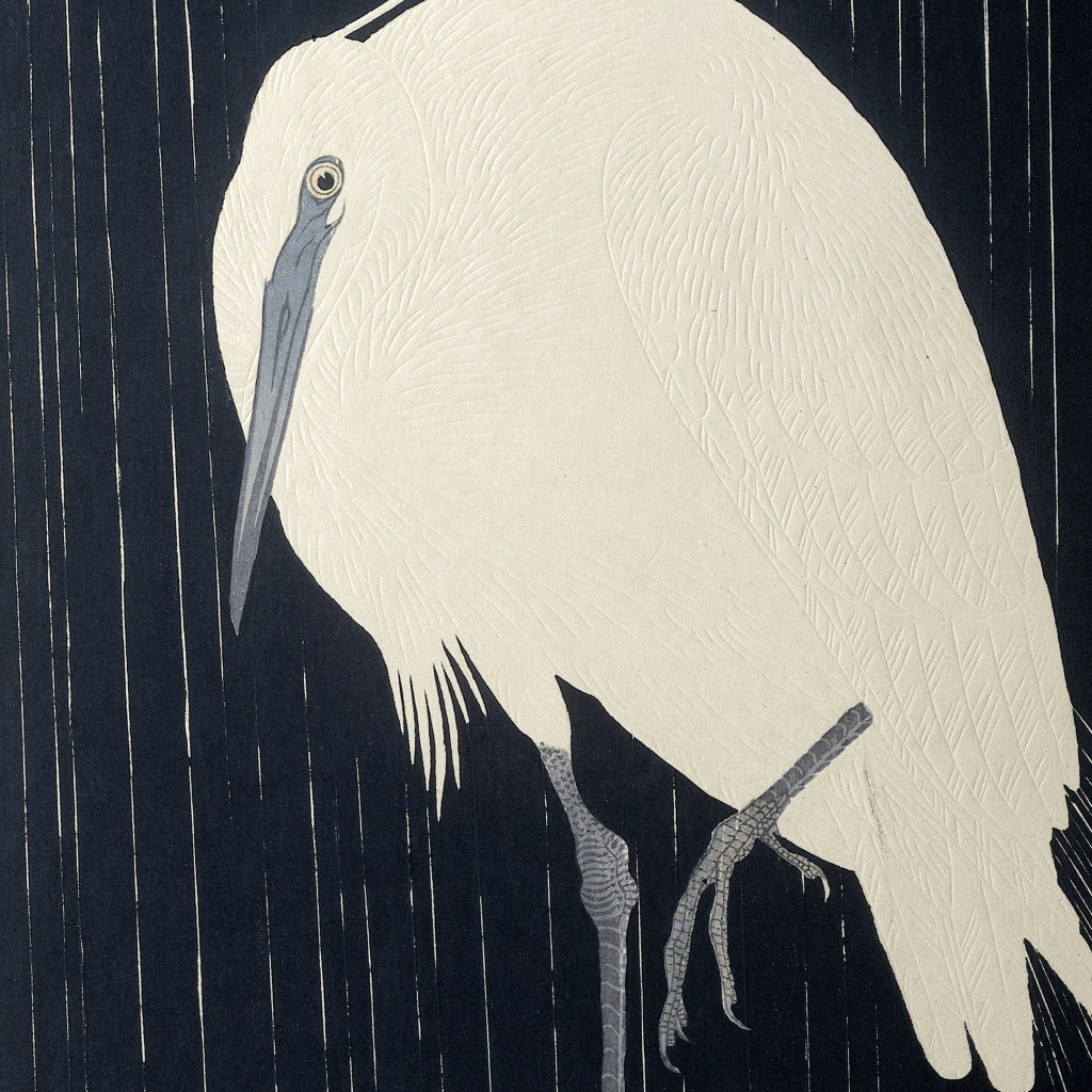 Egret In The Rain by undefined